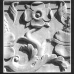 La rosa malatestiana